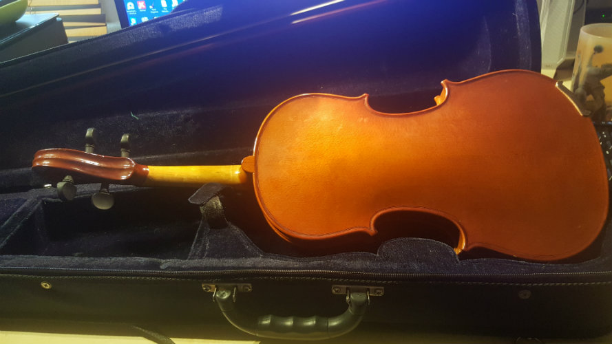 Beginner violin back